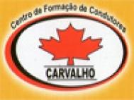 Loja - Auto Escola Carvalho